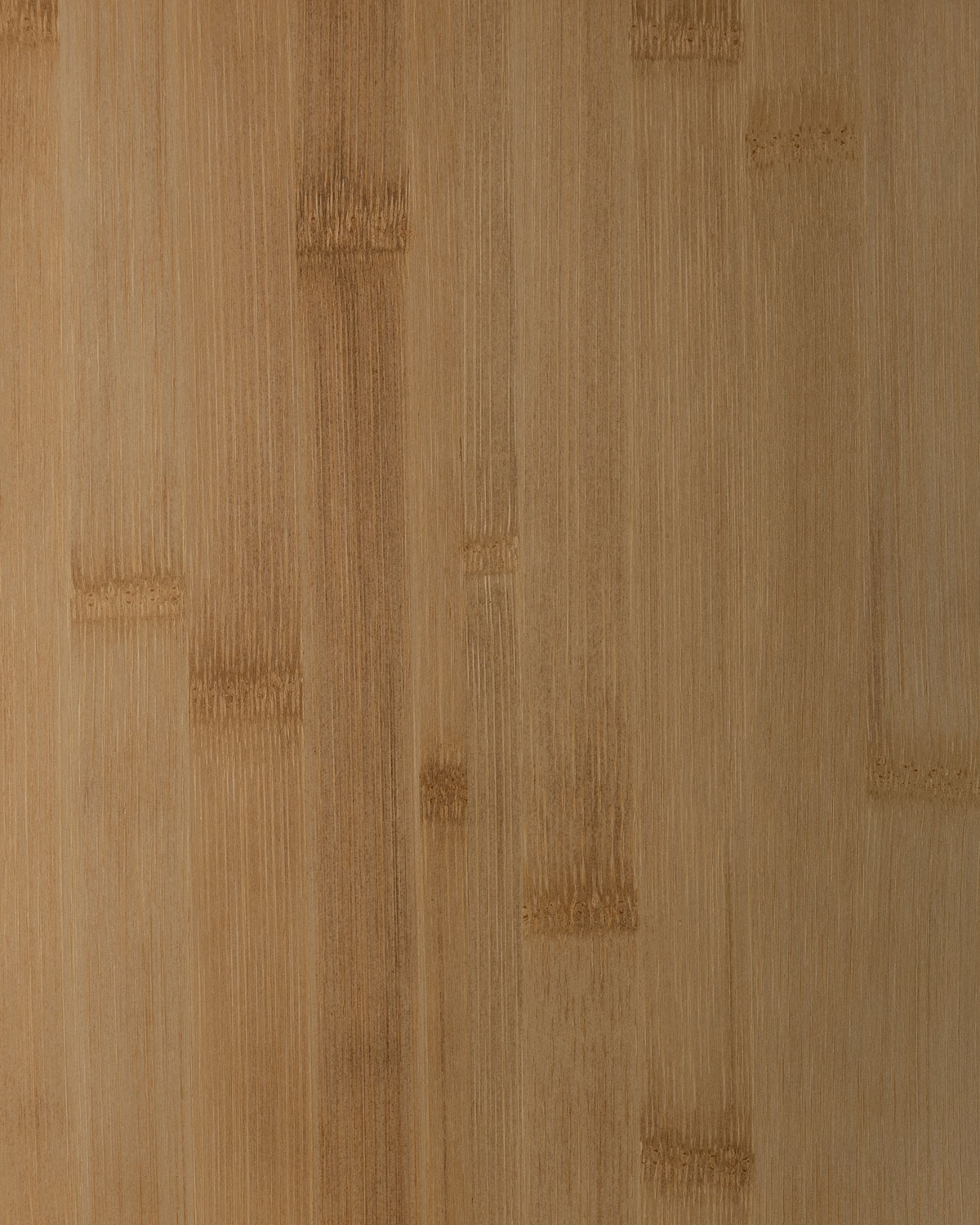 Bamboo, Wide Natural Color