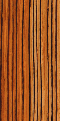 Zebrawood_FT2