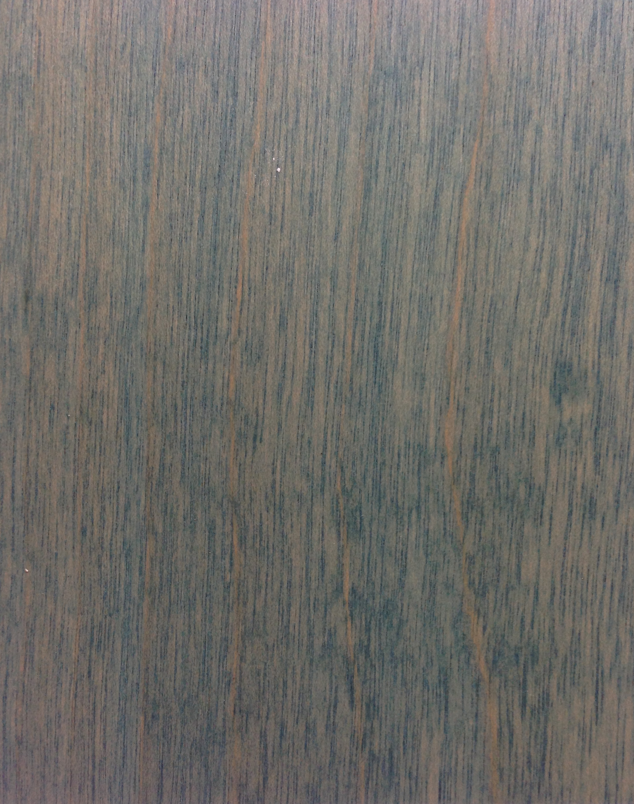 white-birch-fc-120208_8354501741_o