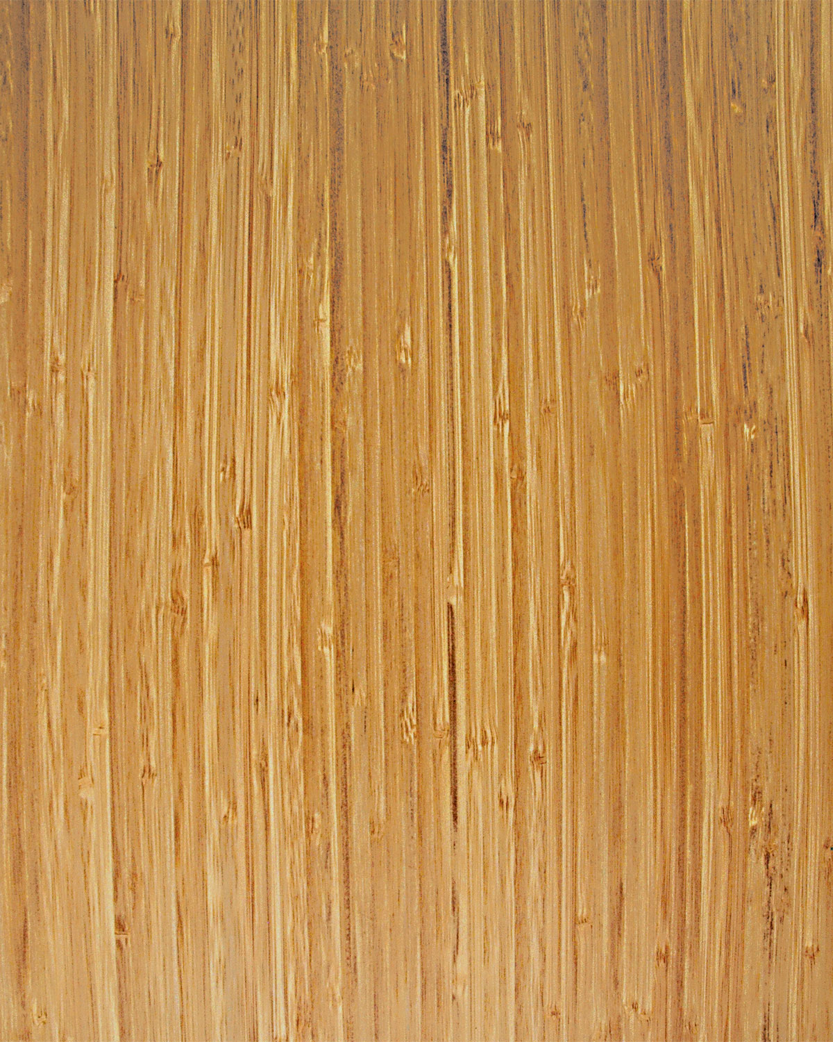 Bamboo, Narrow-Caramel