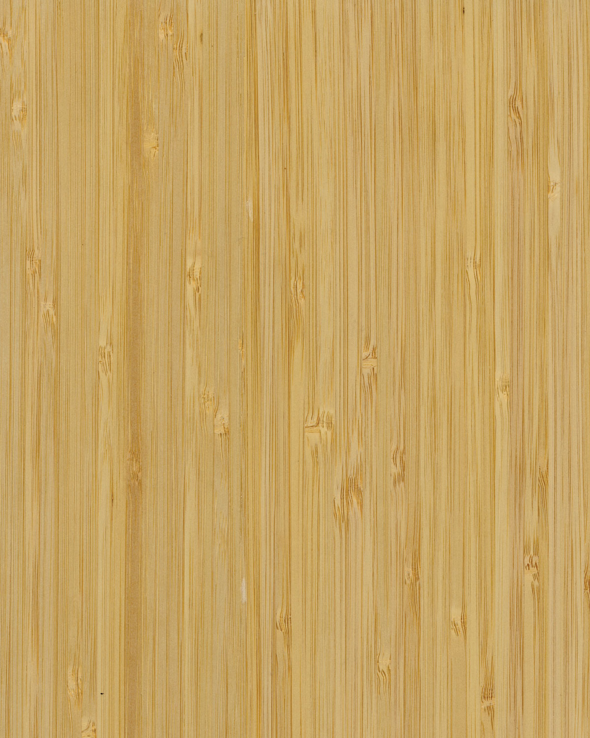Bamboo, Narrow/Natural Color