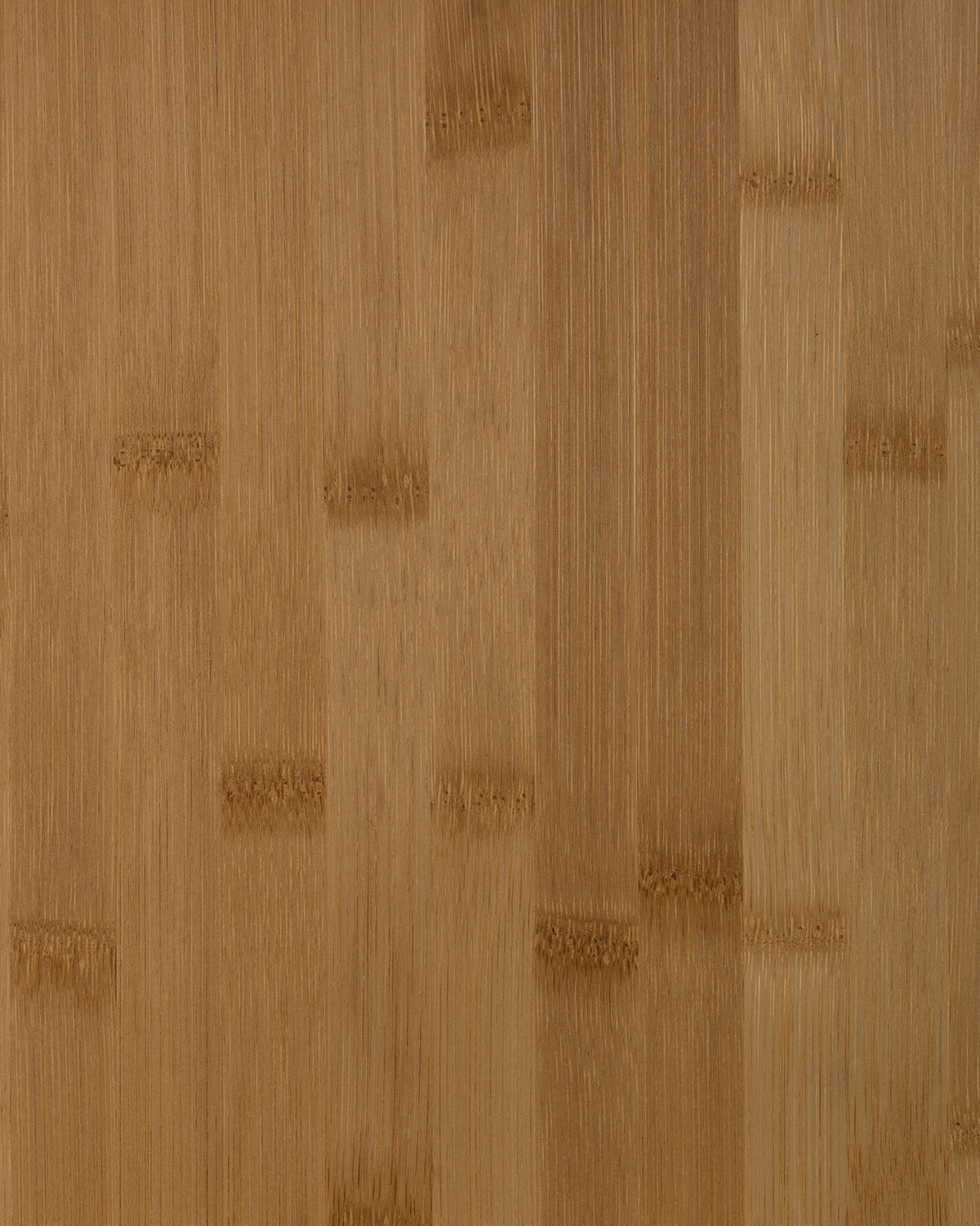 Bamboo, Caramel Color Wide